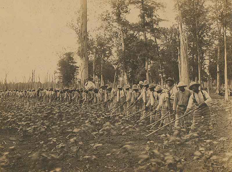 Parchman Prison labor done by people who are incarcerated in 1911.